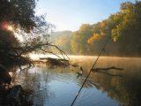 Robinson Europe, fot. freeimages.com