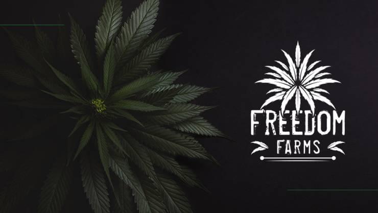 Mocny początek emisji Freedom Farms
